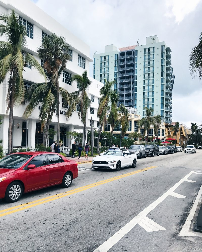 south-beach-life-with-aco-miami-recap-travel.jpg