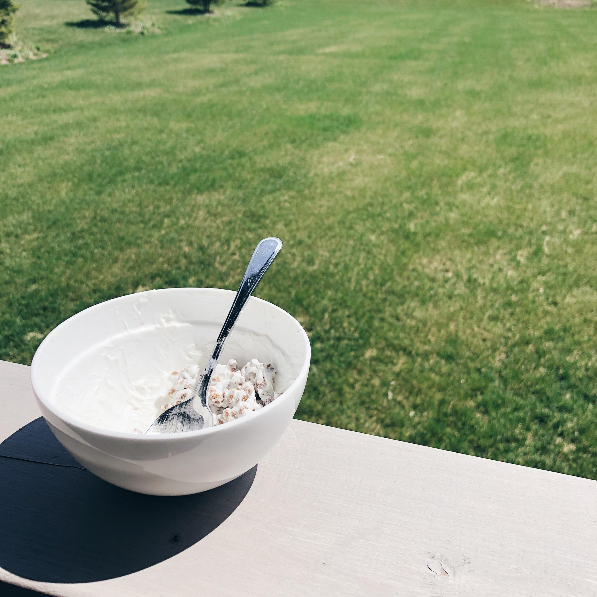 bowl of bran buds, summer deck