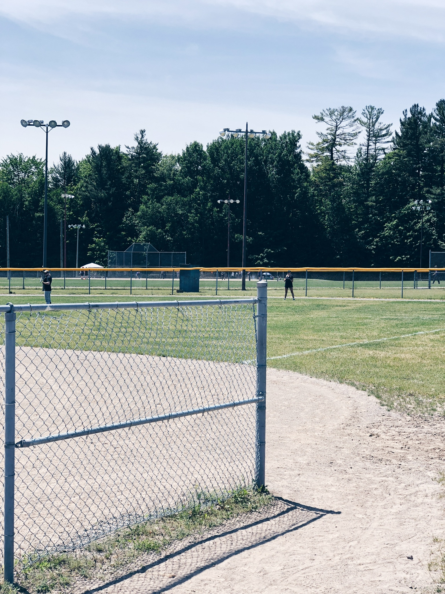softball field in summer
